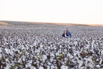 lone star sc cotton field photography session