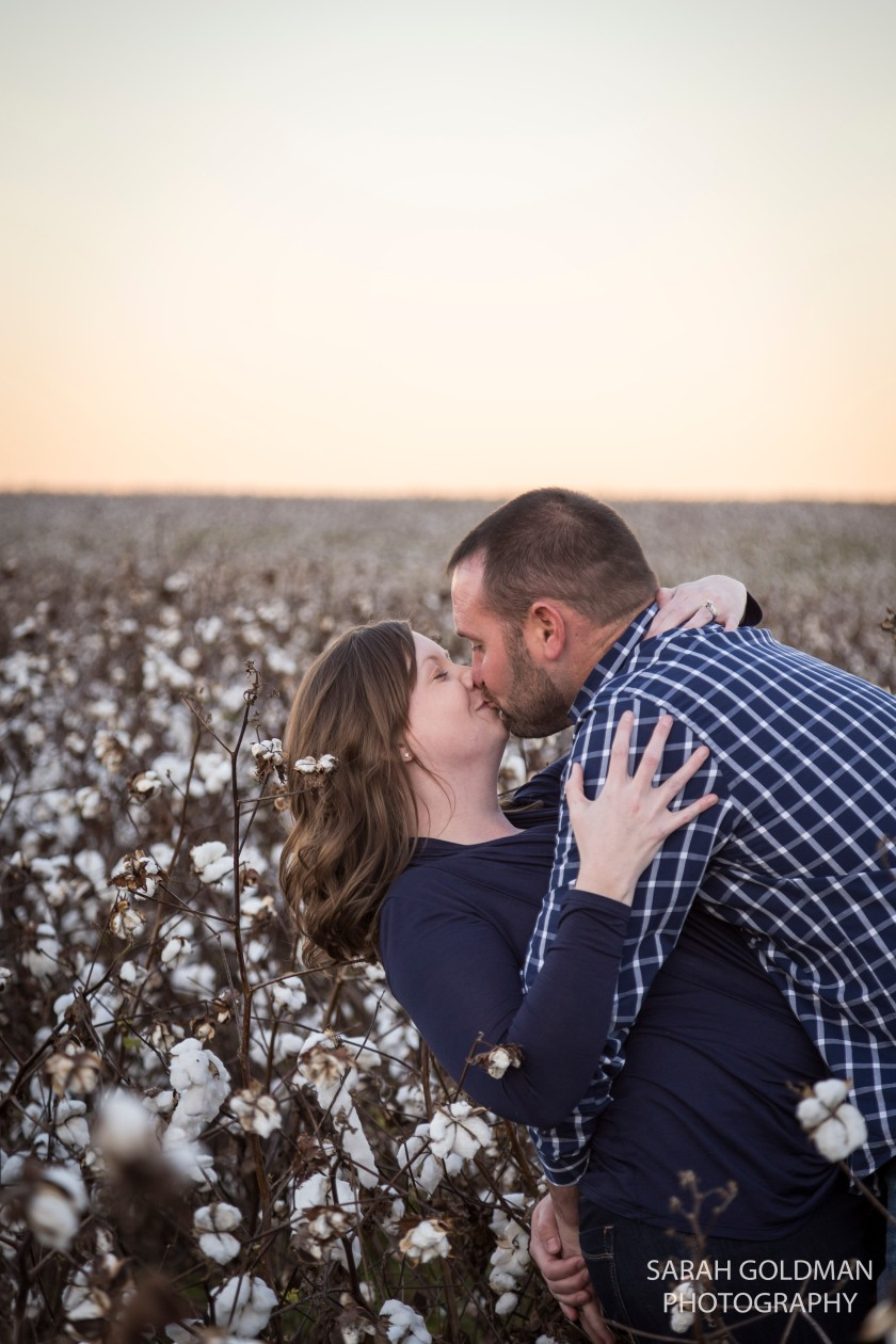 cotton field sunset husband and wife