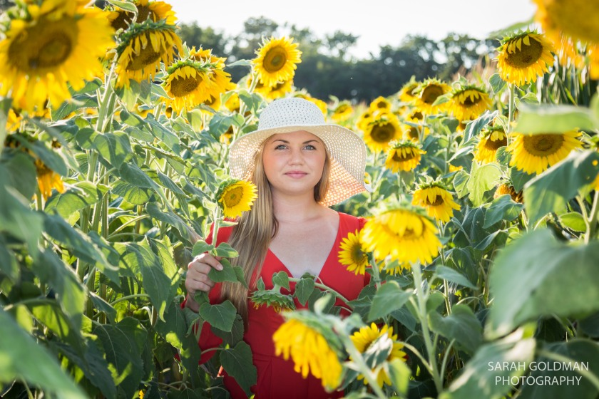 senior-pictures-with-sunflowers (1)