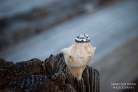 wedding rings on a seashell