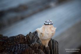 wedding rings on a seashell
