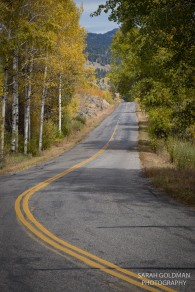country road to heart six guest ranch with aspen trees