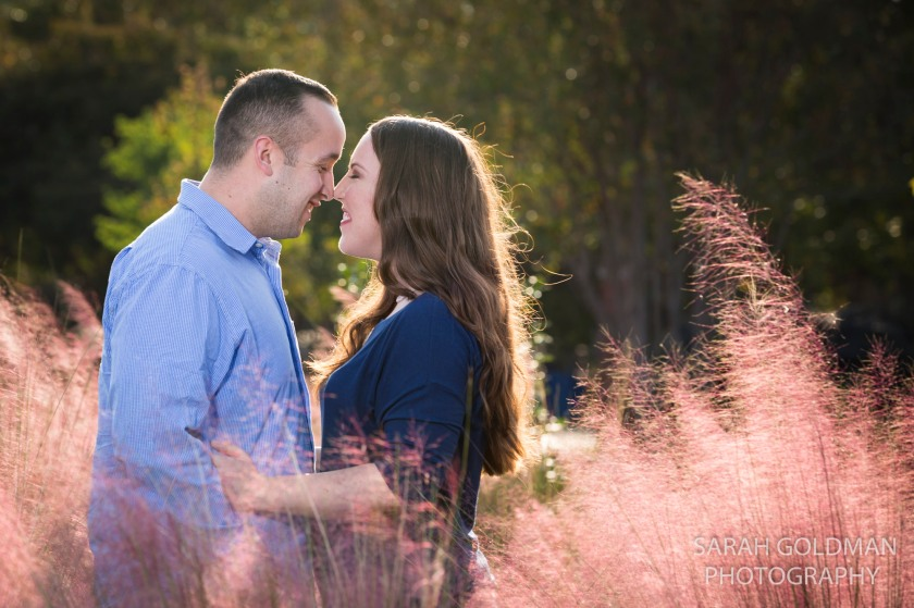 engagement photos with sweetgrass