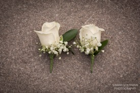 Charleston sc photographers (16)