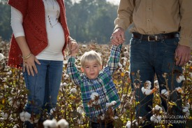 family-photos-in-cotton-field (28)
