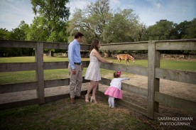 Middleton Place engagement photos (22)