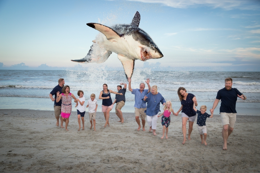 photoshopped shark beach photo